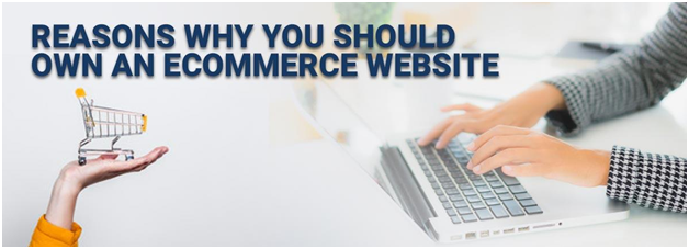 Reasons Why You Should Own an eCommerce Website 2020